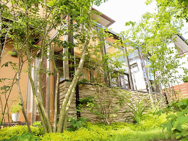神戸市 K様邸 No.T015 メイン写真