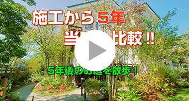 雑木の庭施工例 メイン写真