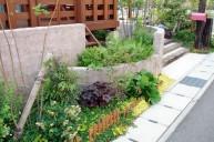 玄関前をおしゃれに飾る植栽 ガーデニング