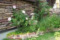 バラが美しいイングリッシュガーデン ガーデニング