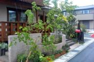 道路境界を飾る植栽 ガーデニング