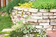 板石積みの可愛い花壇とグランドカバー(セダム) 土留め