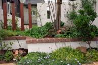 門周り植栽 ガーデニング