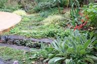 枕木アプローチ植栽 ガーデニング