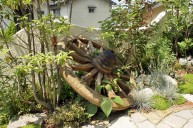 植栽の中に車輪のオブジェ ガーデニング