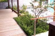 植栽とウッドデッキの組み合わせ テラス