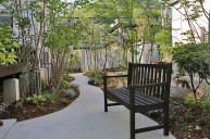 ベンチのあるお庭 中庭
