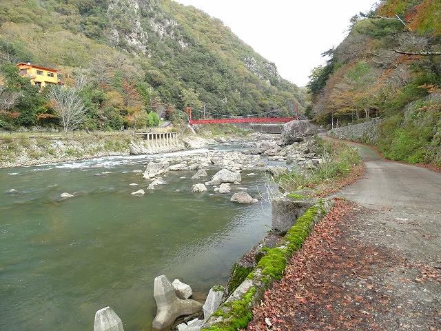 対岸から橋